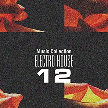Music Collection. Electro House, Vol. 12
