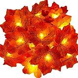 Decorazioni autunnali, Ainkedin luci halloween, 30 Maple Leaf Light Decorazioni del Ringraziamento Ghirlanda, halloween decorazioni decorazioni natalizie applique da parete interno moderno autunno