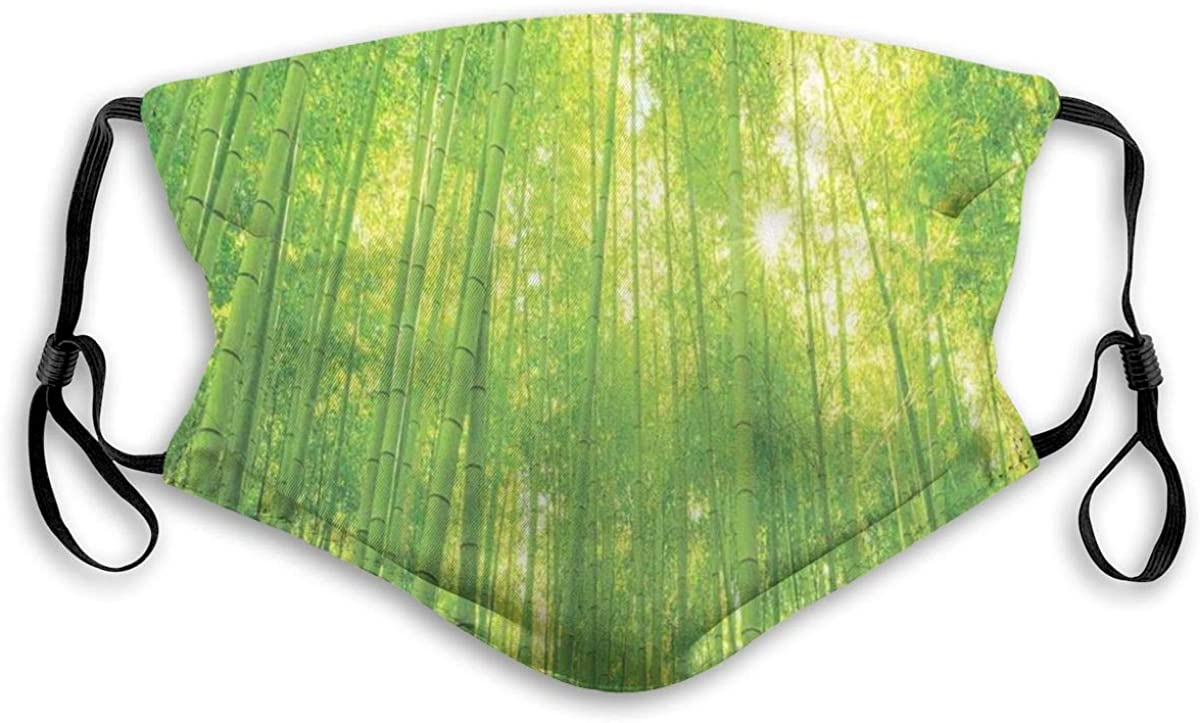 Activated Carbon Filter Windproof mask for Unisex Adult,Image of Bamboo Trees with Sun Rays in Rainforest Exotic Wildlife Plants Nature Zen Print,Printed Facial Decorations