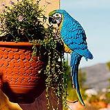 Gärtner Pötschke Gartenfigur Papagei Lora