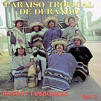Banda y Tamborazo, vol 2