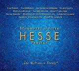 """Hesse Projekt """"Die Welt unser Traum"""" - Hermann Hesse"""