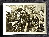 新網走番外地 流人岬の血斗(1969)  映画スチール 1枚