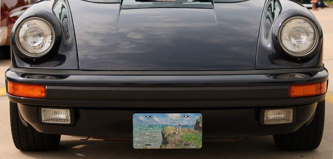 6 x 12 inches Trailer Truck RV Amcove British Flag Metal License Plate Black and Black Britain Flag Auto Tag for Car