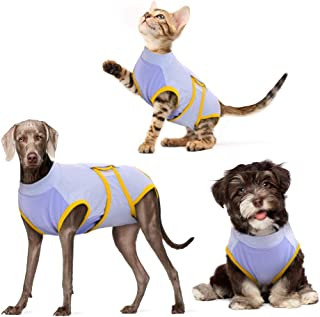 DENTRUN Dog Surgery Recovery Suit, Abdominal Wounds Bandages Protector, Recovery Shirt for Male Female Dog, Dog Weaning & ...