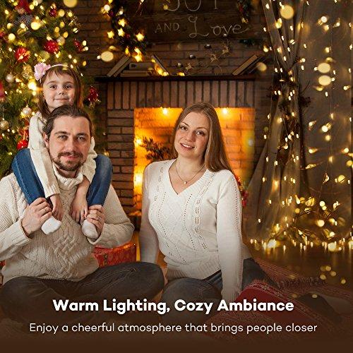TaoTronics LED String Lights