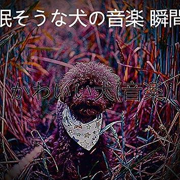 かわいい犬(音楽)