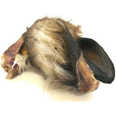 Express Pet Supplies 20 x Extra Large XL Buffalo Ears 100/% Natural Treat for Dogs