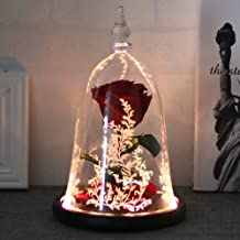 roses sealed in glass