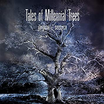 …and Seetyca: Tales of Millennial Trees