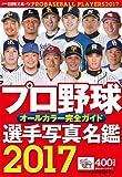 プロ野球選手写真名鑑 2017―オールカラー完全ガイド (NIKKAN SPORTS GRAPH)