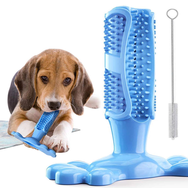 傀儡荷物電気ブルー犬用おもちゃ ペット犬用歯磨きおもちゃ ペット用歯磨き石取り口腔の清潔