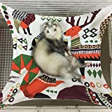 Ferret Cat Hammock Bed for Cage 100% Handmade Pet Canvas Hammocks for Small Animals, Kitten, Guinea Pig, Bunny, Rabbit, Rat Comfortable Hanging Bed, Soft Sleepy Mat Pad for Sleeping and Resting