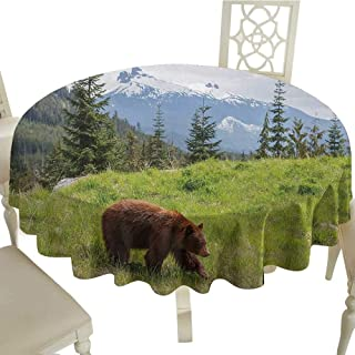 Bear Easy Care Leakproof and Durable Tablecloth Wildlife up in The Mountains Theme Furry Animal Carnivore Yellowstone Nature Habitat Outdoor Picnic D43.3 Inch Green Brown