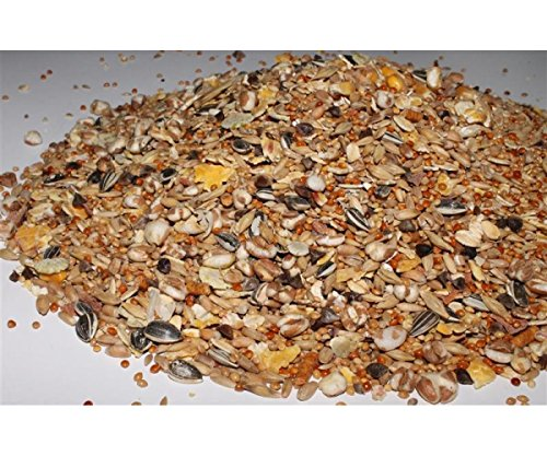 Mäusefutter 1 kg Anhaltiner Premiumfutter