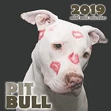 Pit Bull 2019 Mini Wall Calendar