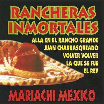 Rancheras Inmortales (Instrumental)