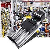Actuador lineal motorizado Carrera de 100 mm Tornillo de bola Doble eje Motor paso a paso(1610 screw, effective range 100mm)