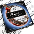 Adagio Professional 5-String Banjo Strings Set