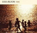 Songtexte von Luka Bloom - Tribe