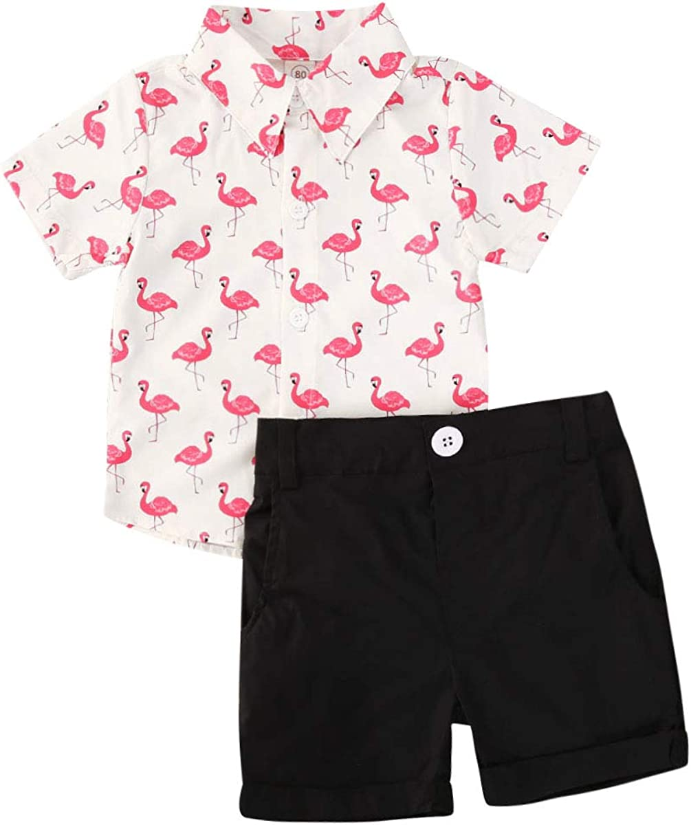 Toddler Baby Boy Shorts Set Floral Short Sleeve Button Down Shirt + Bermuda Shorts Summer 2Pcs Outfits