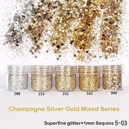 1 Bouteille Champagne Argent Or Série Mixte Ongles Art Paillettes Paillettes DIY Poussière Poussière Scintillante Nail Sequin Paillette Flocons Conseils, 153 10 ml