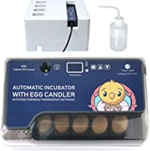 little giant egg incubator combo kit