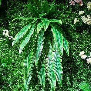 Zhi Zhi Artificial Plant Grass Green Artificial Plant Leaf Hanging Rattan Fern Flower Decoration Home Decoration Plant