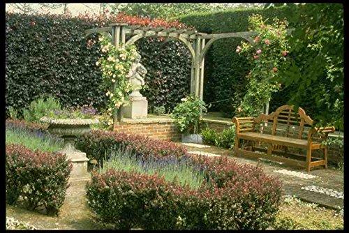 Metalen bord Engels Landelijke Tuinen Uk Gb 131092 Tuinstoel In Rose Pergola Met Berberis En Lavendel A4 12x8 Aluminium