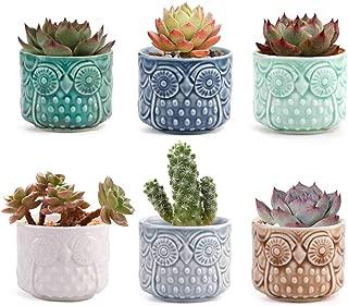 T4U Small Ceramic Succulent Planter Pot, Cute Owl Bonsai Pot for Decor Desktop Windowsill Bookshelf, Perfect Gift on Christmas and Birthday, Pack of 6(Excluding Plants)