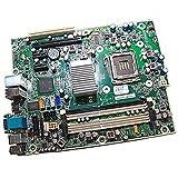HP Placa base Compaq 6000 Pro 531965-001 503382-001 Motherboard