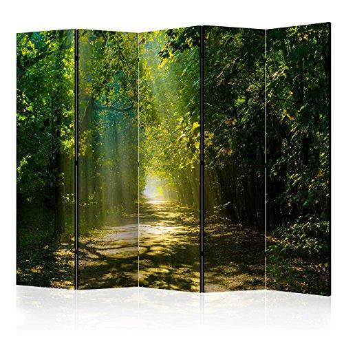 murando Raumteiler Wald Natur Foto Paravent 225x172 cm beidseitig auf Vlies-Leinwand Bedruckt Trennwand Spanische Wand Sichtschutz Raumtrenner grün c-A-0086-z-c