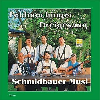 Schmidbauer Musi und der Feldmochinger Dreigesang
