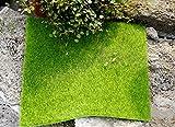 Niyatree 1 Stück 49 * 70cm Kunstgras Kunstmoos Kunstrasen Rasenteppich DIY Mikro Landschaft Miniatur Dekoration Haus Deko - 2