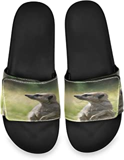 Cute Animal Funny Meerkat Mens Summer Sandals Slide House Adjustable Slippers Non Skid Boys