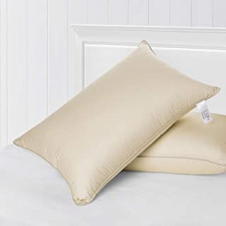 Almohadas De La Cama para Dormir, Prima Soft Standard Almohadas con 100% Algodón Funda De Almohada, para El Tamaño Lateral Y Posterior del Durmiente 2 Paquete Estándar De 19 X 30 Pulgadas,Beige
