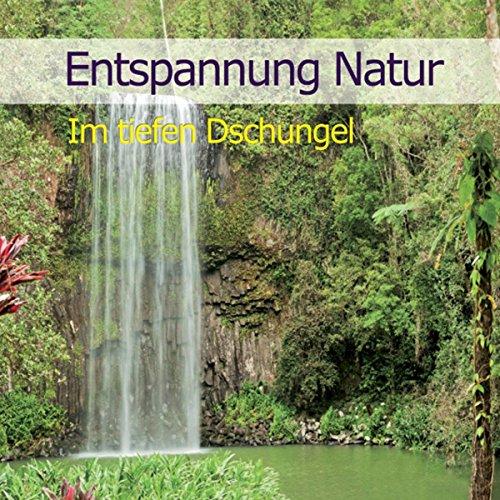 Entspannung Natur: Im tiefen Dschungel Titelbild