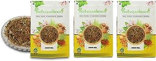 IndianJadiBooti Amar Bel - Akash Bel - Afteeyun - Aftimoon - Dodder - Cuscuta reflexa, 3 Packs of 900 Grams [31.74 Oz]