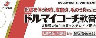 【指定第2類医薬品】ドルマイコーチ軟膏 6g