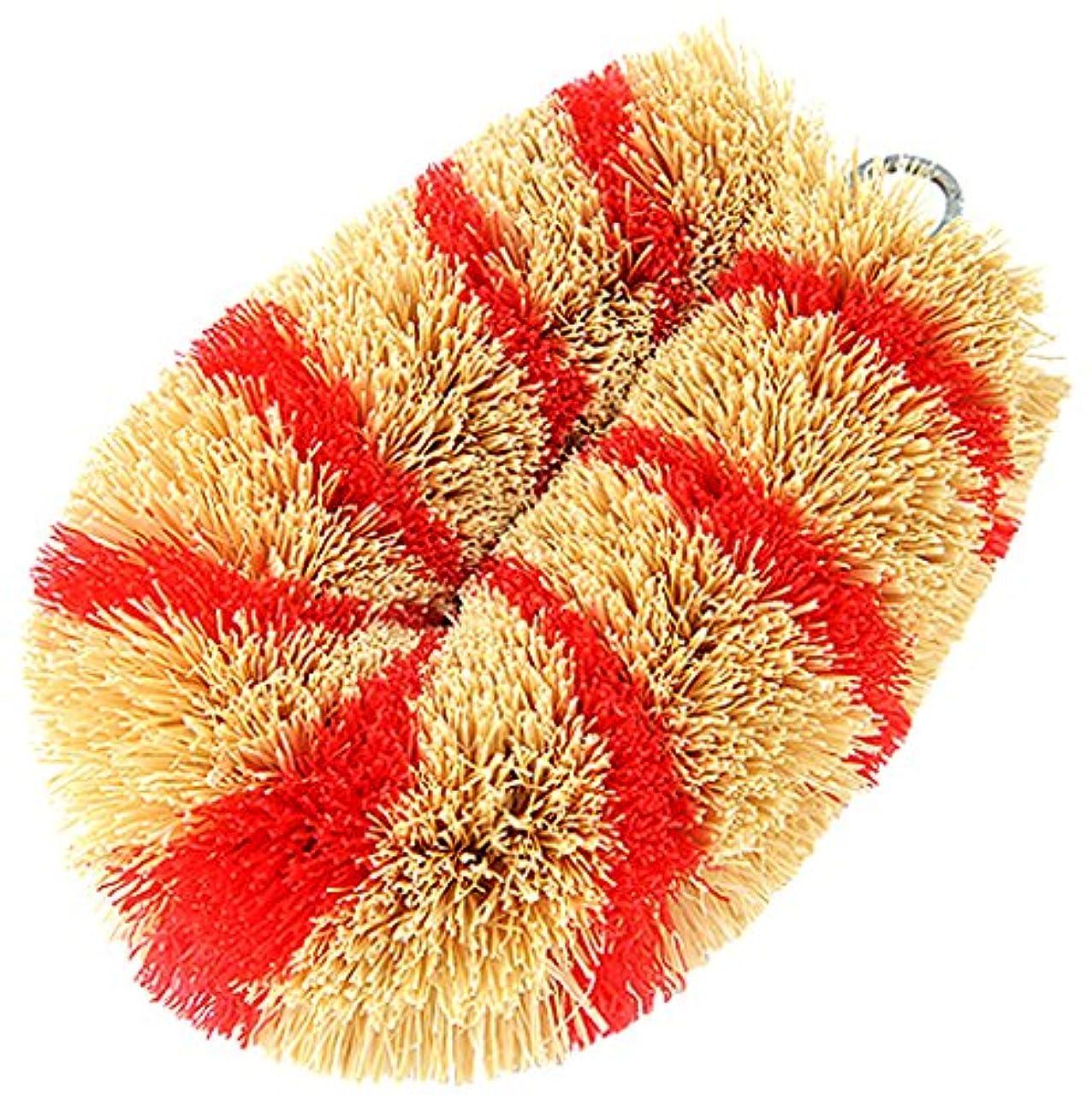 ディレクター維持登録する亀の子 たわし 掃除用 『シマシマミニN』 赤 60×100×40mm