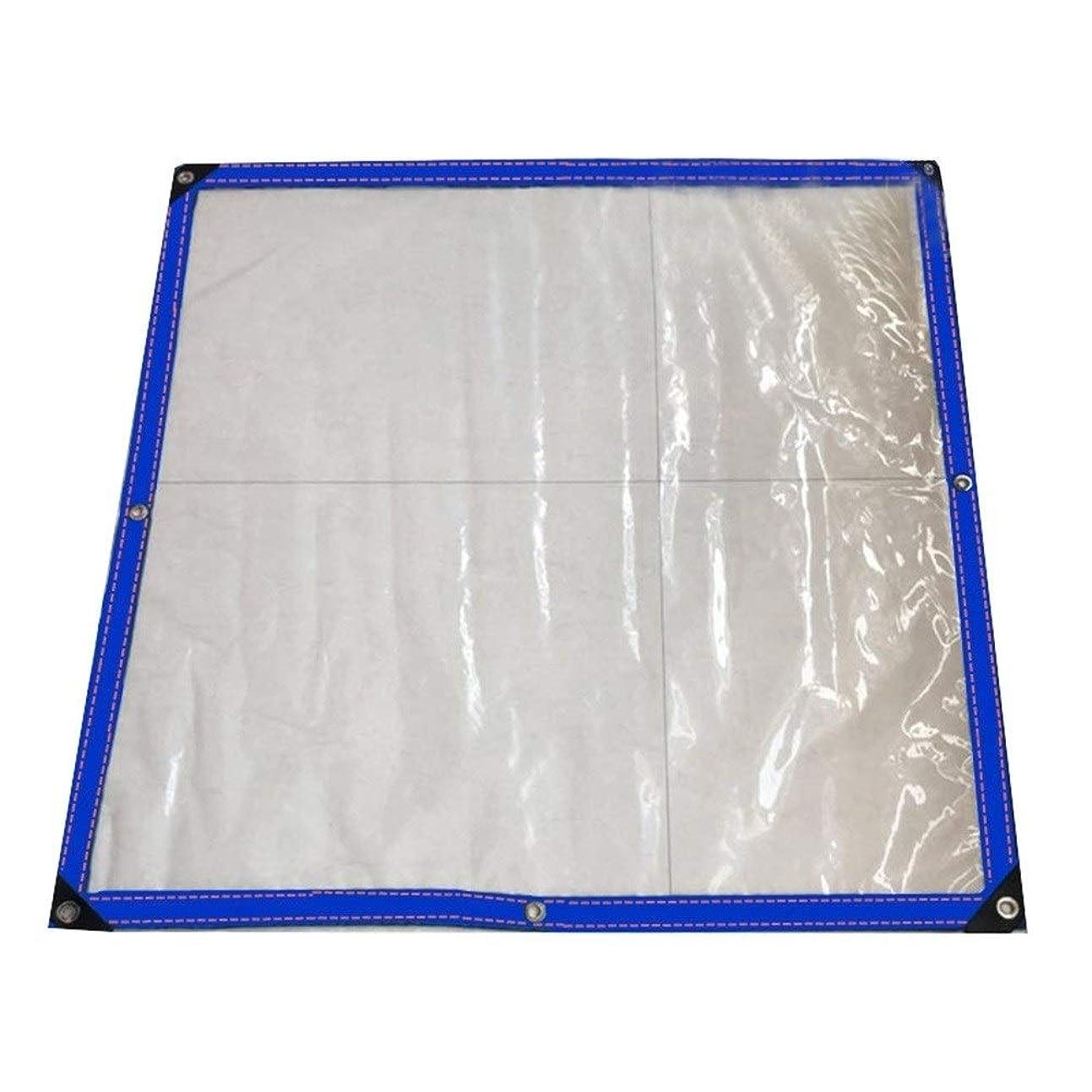無数の徒歩でベッドを作るFQJYNLY 防水シートラップ角庭園日よけグロメット屋外の防塵工場、22サイズ (Color : Clear, Size : 3X6m)