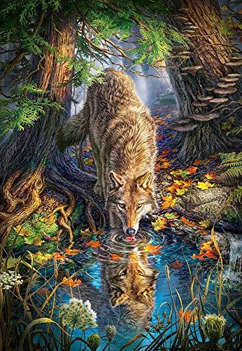 Castorland 5904438151707 C-151707-2 Wolf in The Wild, 1500 Teile Puzzle, bunt