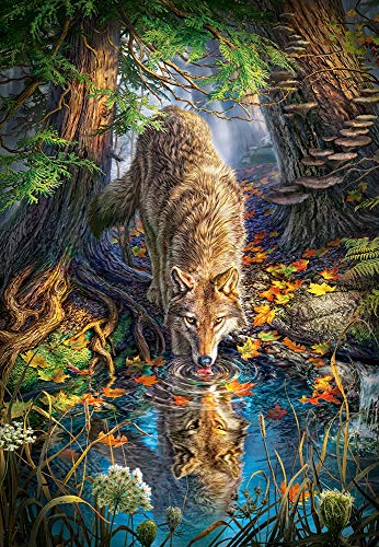 Castorland- Puzzle, Colore Vario, 5904438151707