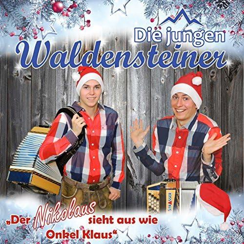 Die jungen Waldensteiner
