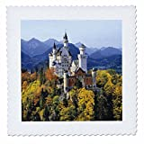 3dRose qs_81792_2 Neuschwanstein Schloss, Bayern, EU10
