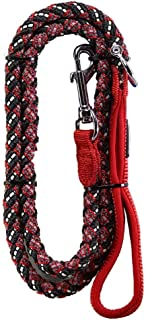 PetSport Triple Safe Dog Leash, Glow in The Dark and Reflective (4 Foot, Red)