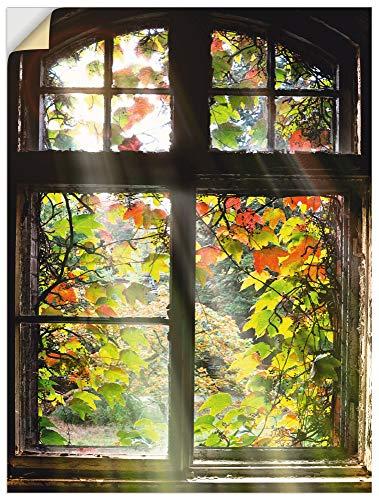 Artland Wandbild selbstklebend Vinylfolie 60x80 cm Fensterblick Fenster Herbst Natur Landschaft Altbau Sonne Baum T5XH