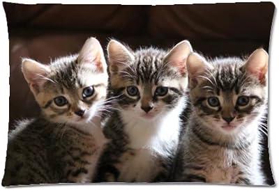 Funny Cute Cat Pillow Case Pillowcases 20