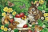 クロスステッチ キット甘いウサギとマウス40x50cm DIYクロスステッチキット刺繍初心者向けホームデコレーション(11CTプレプリントキャンバス刺繍キット 手作り