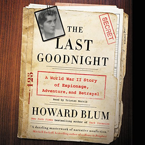 The Last Goodnight audiobook cover art